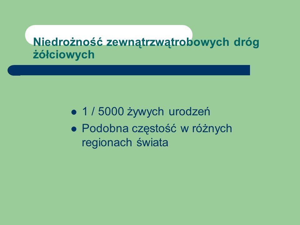TEORIE ETIOPATOGENEZY NDŻ: teoria embriologiczna (C.