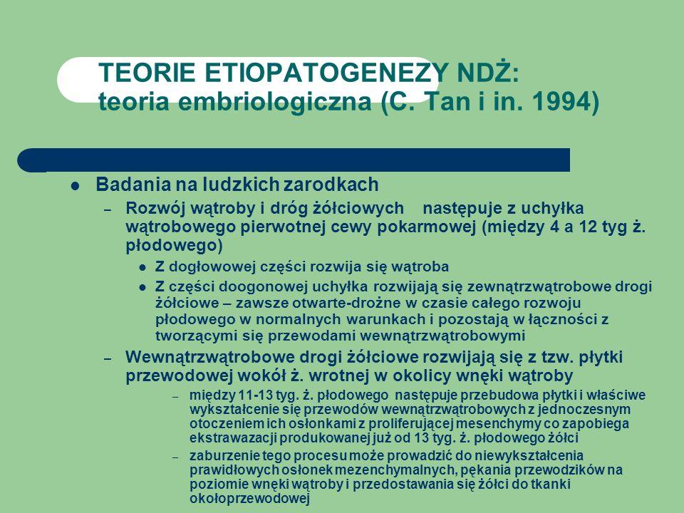 TEORIE ETIOPATOGENEZY NDŻ: teoria embriologiczna (C. Tan i in. 1994) Badania na ludzkich zarodkach – Rozwój wątroby i dróg żółciowych następuje z uchy