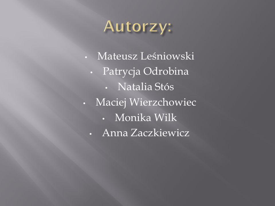 Mateusz Leśniowski Patrycja Odrobina Natalia Stós Maciej Wierzchowiec Monika Wilk Anna Zaczkiewicz