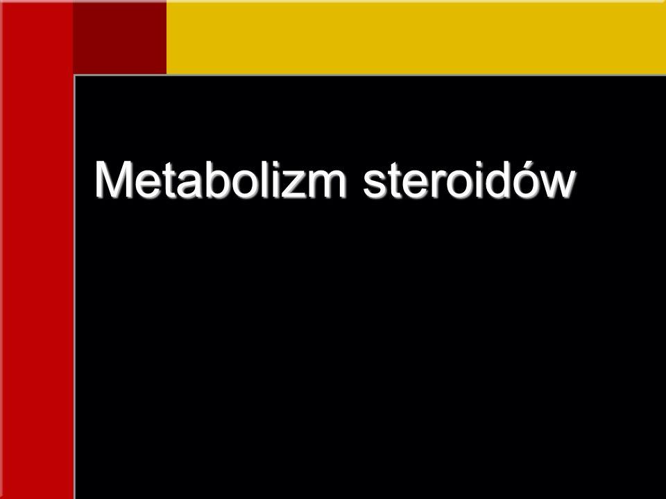 Metabolizm steroidów