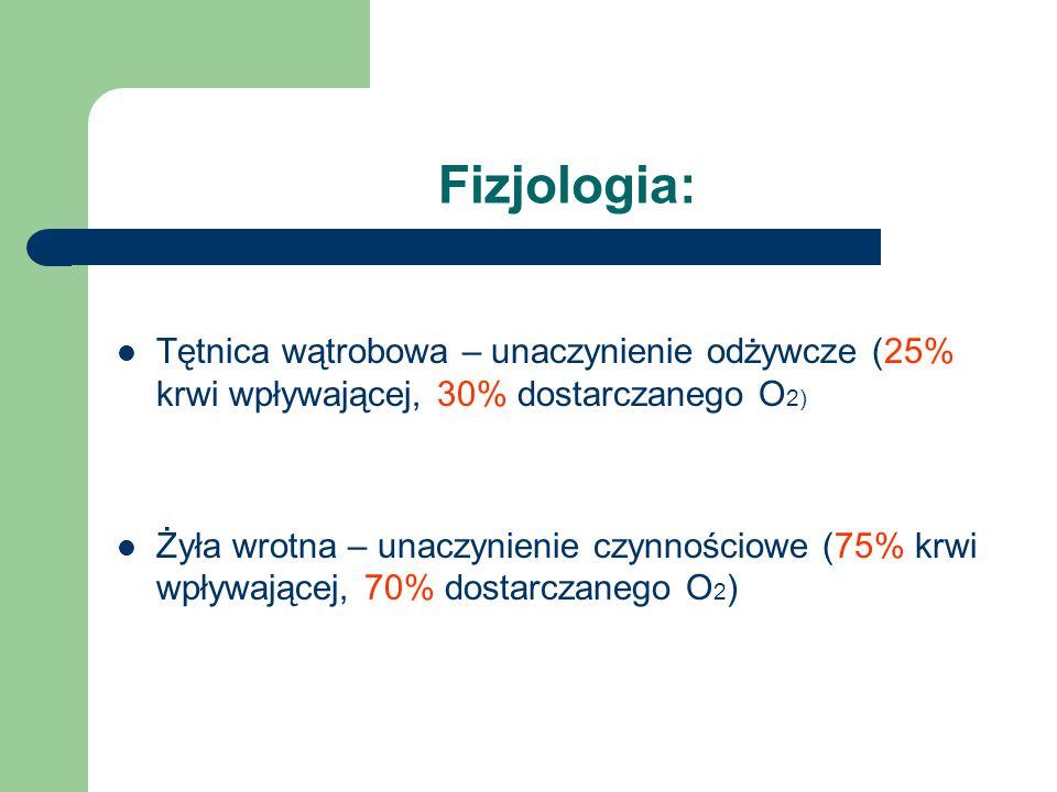 Fizjologia: Tętnica wątrobowa – unaczynienie odżywcze (25% krwi wpływającej, 30% dostarczanego O 2) Żyła wrotna – unaczynienie czynnościowe (75% krwi