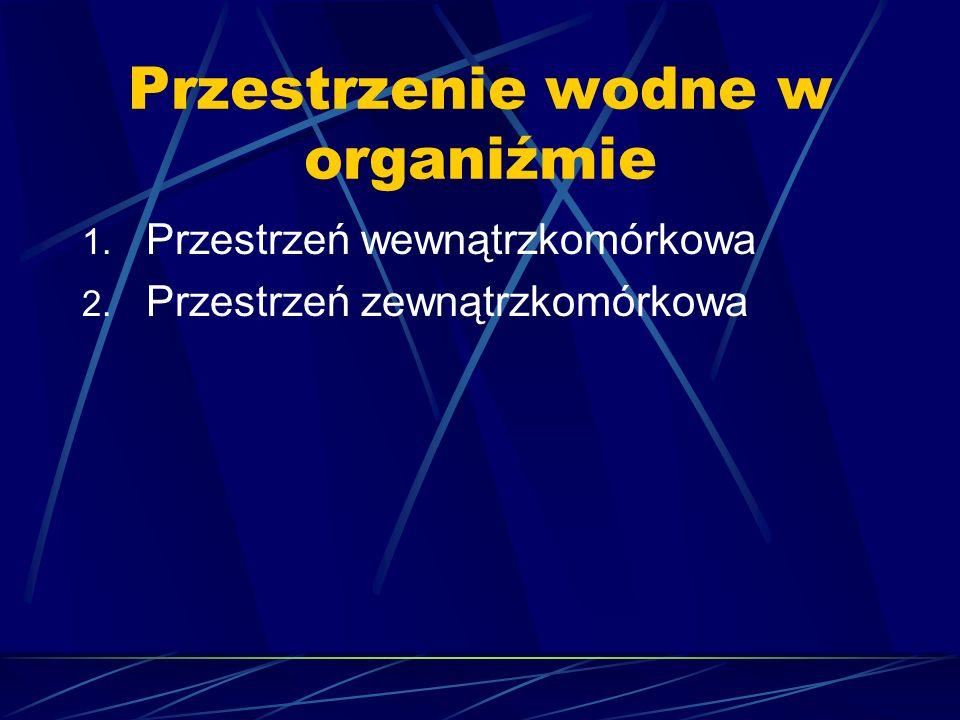 Przestrzenie wodne w organiźmie 1. Przestrzeń wewnątrzkomórkowa 2. Przestrzeń zewnątrzkomórkowa