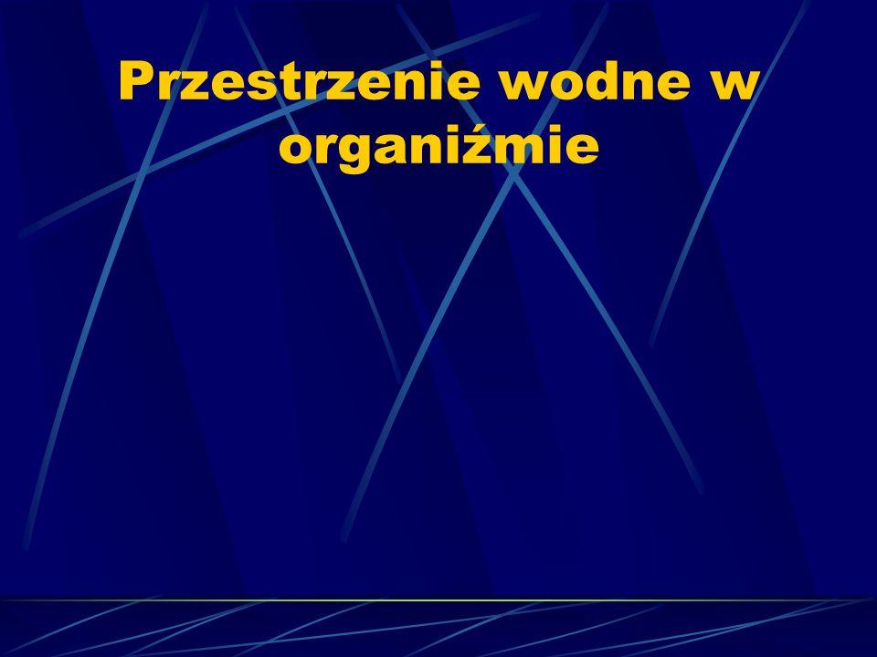 1. Przestrzeń wewnątrzkomórkowa