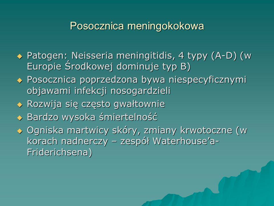 Posocznica meningokokowa  Patogen: Neisseria meningitidis, 4 typy (A-D) (w Europie Środkowej dominuje typ B)  Posocznica poprzedzona bywa niespecyfi