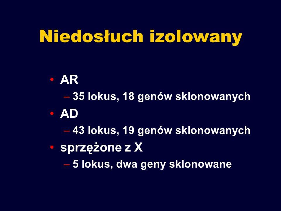 Niedosłuch izolowany AR –35 lokus, 18 genów sklonowanych AD –43 lokus, 19 genów sklonowanych sprzężone z X –5 lokus, dwa geny sklonowane
