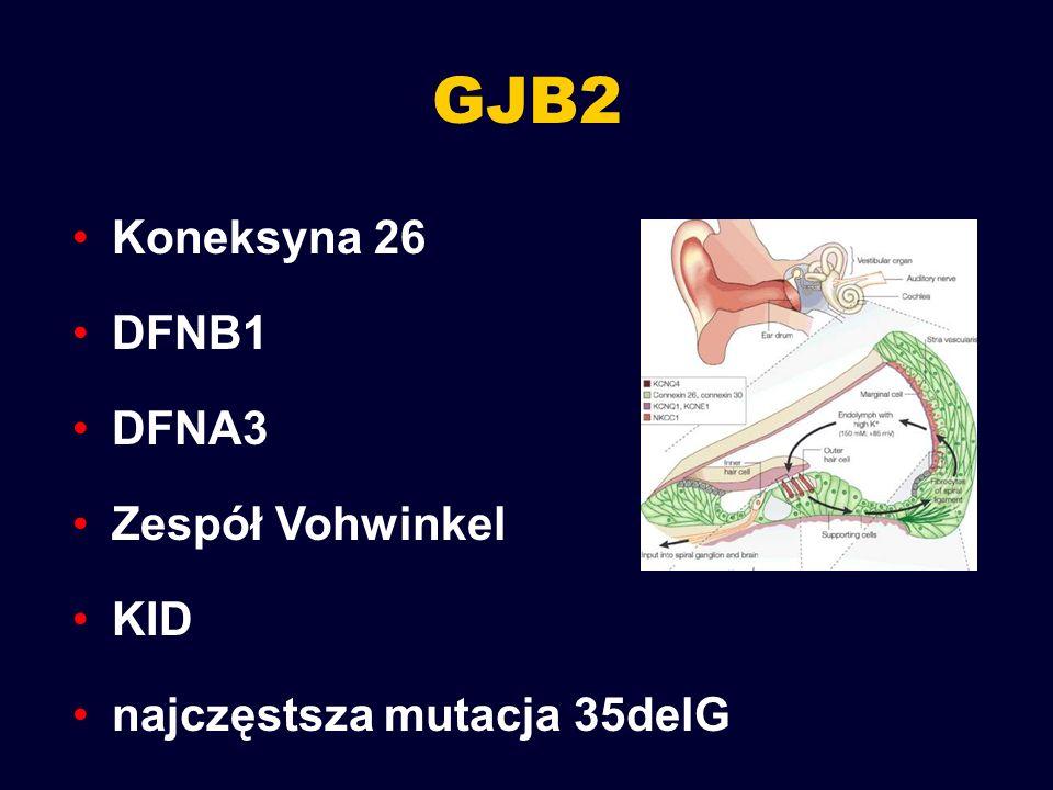 GJB2 Koneksyna 26 DFNB1 DFNA3 Zespół Vohwinkel KID najczęstsza mutacja 35delG