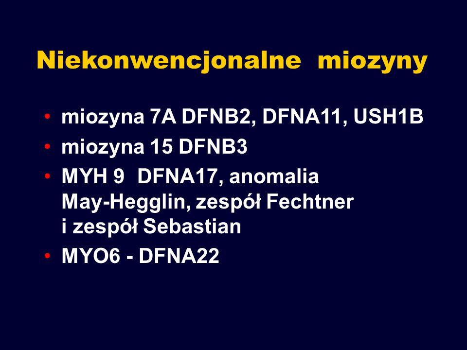 Niekonwencjonalne miozyny miozyna 7A DFNB2, DFNA11, USH1B miozyna 15 DFNB3 MYH 9DFNA17, anomalia May-Hegglin, zespół Fechtner i zespół Sebastian MYO6