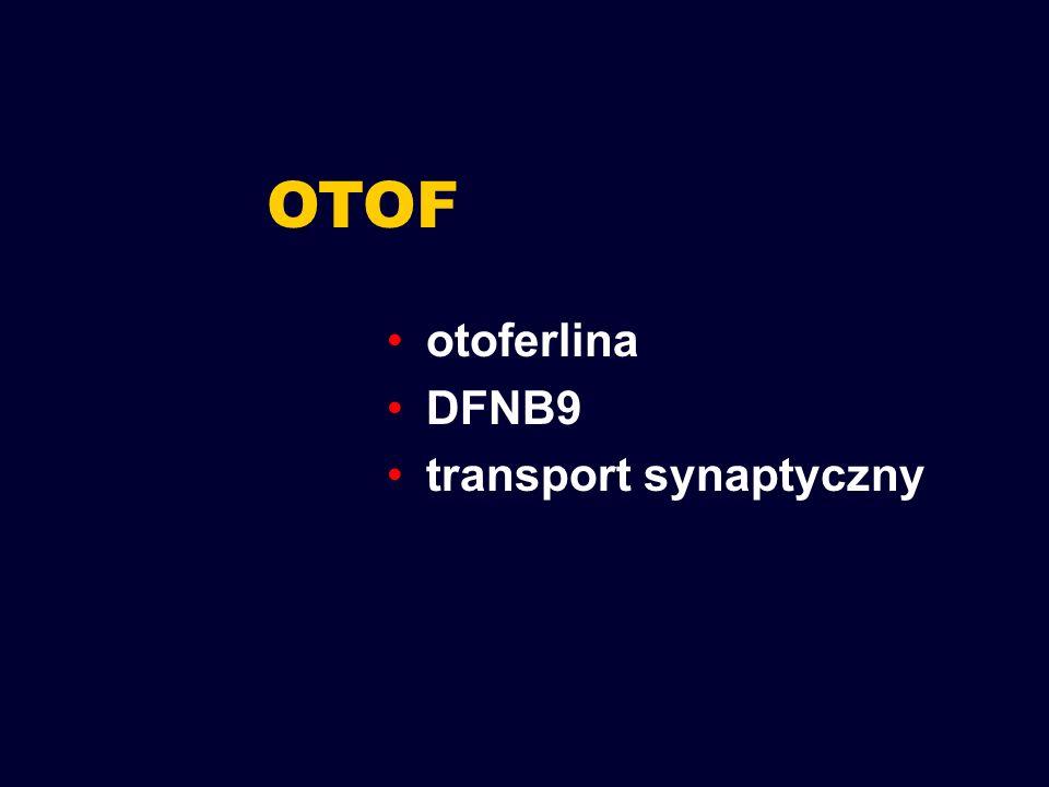 OTOF otoferlina DFNB9 transport synaptyczny