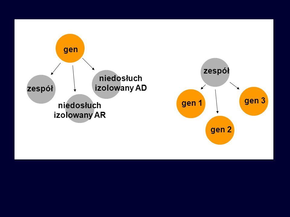 zespół gen niedosłuch izolowany AD niedosłuch izolowany AR zespół gen 1 gen 2 gen 3