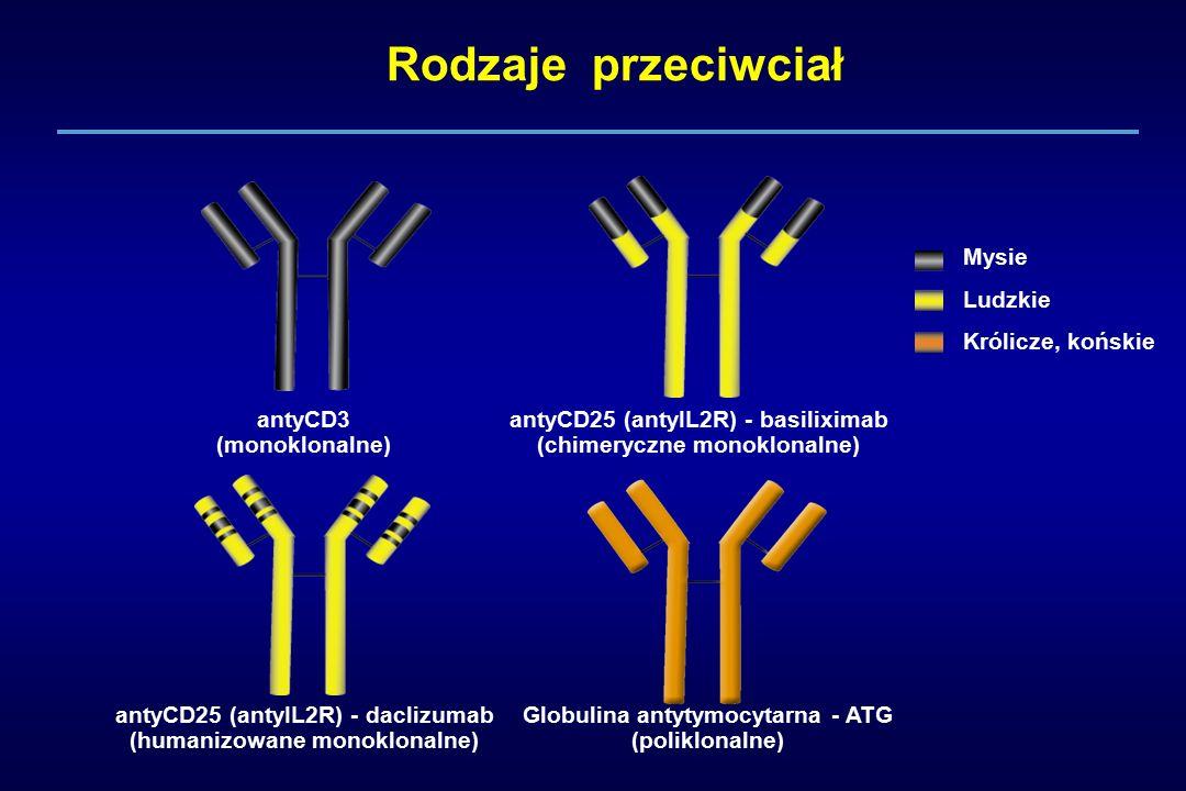 Rodzaje przeciwciał antyCD3 (monoklonalne) antyCD25 (antyIL2R) - basiliximab (chimeryczne monoklonalne) antyCD25 (antyIL2R) - daclizumab (humanizowane