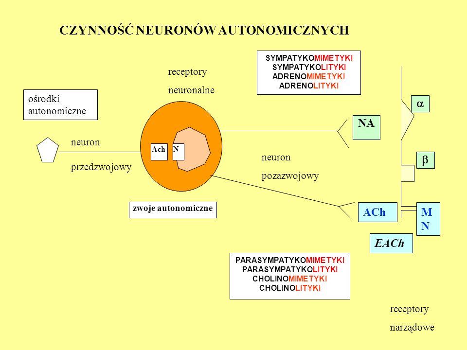 AchN NA zwoje autonomiczne   PARASYMPATYKOMIMETYKI PARASYMPATYKOLITYKI CHOLINOMIMETYKI CHOLINOLITYKI SYMPATYKOMIMETYKI SYMPATYKOLITYKI ADRENOMIMETYK