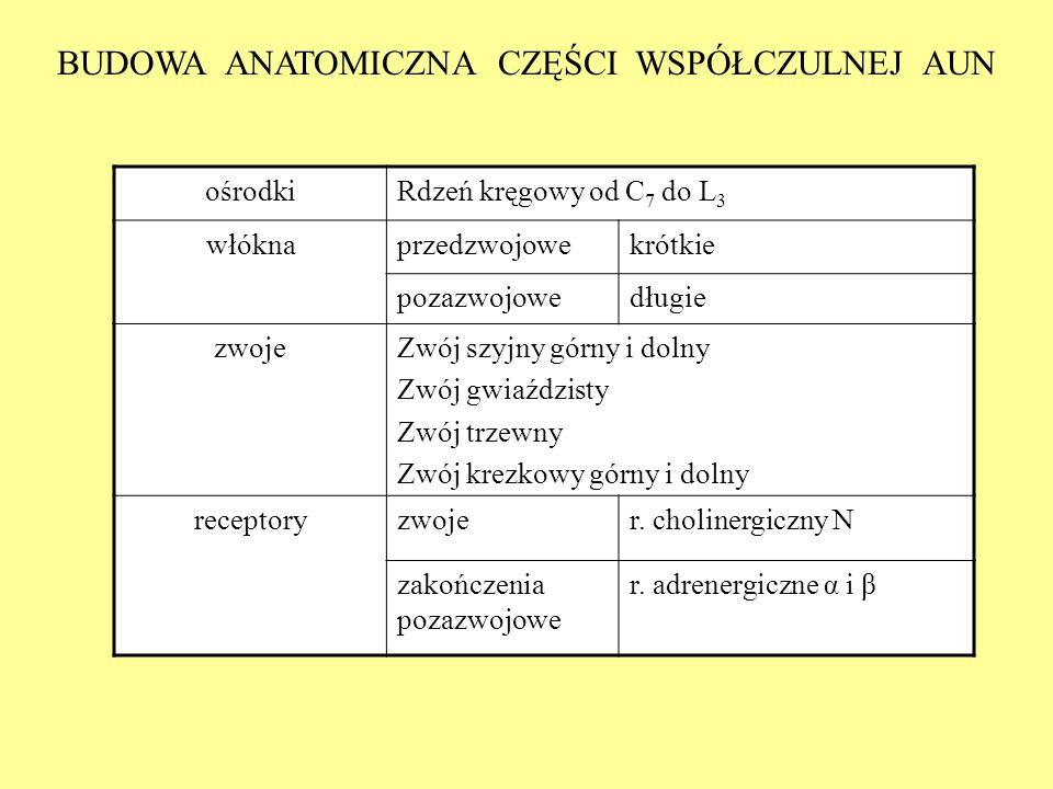 BUDOWA ANATOMICZNA CZĘŚCI WSPÓŁCZULNEJ AUN ośrodkiRdzeń kręgowy od C 7 do L 3 włóknaprzedzwojowekrótkie pozazwojowedługie zwojeZwój szyjny górny i dol