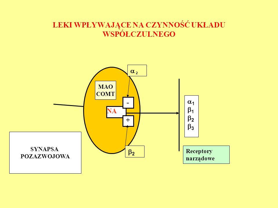 LEKI WPŁYWAJĄCE NA CZYNNOŚĆ UKŁADU WSPÓŁCZULNEGO NA - + 11231123  2 Receptory narządowe 22 SYNAPSA POZAZWOJOWA MAO COMT