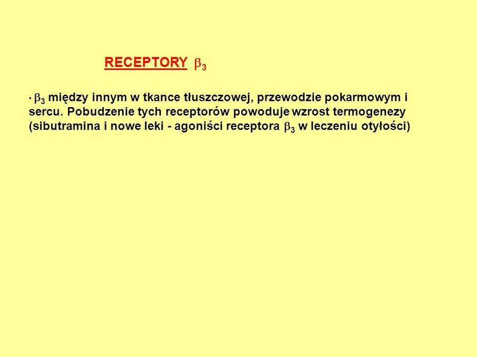 RECEPTORY  3  3 między innym w tkance tłuszczowej, przewodzie pokarmowym i sercu. Pobudzenie tych receptorów powoduje wzrost termogenezy (sibutramin