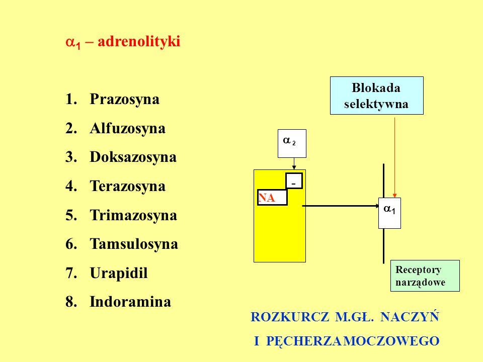  1 – adrenolityki 1.Prazosyna 2.Alfuzosyna 3.Doksazosyna 4.Terazosyna 5.Trimazosyna 6.Tamsulosyna 7.Urapidil 8.Indoramina NA - 11  2 Receptory nar