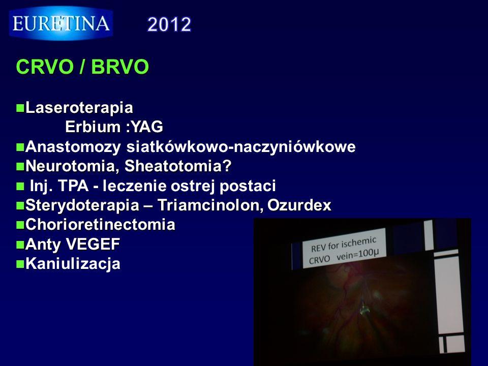 CRVO / BRVO Laseroterapia Laseroterapia Erbium :YAG Erbium :YAG Anastomozy siatkówkowo-naczyniówkowe Neurotomia, Sheatotomia? Neurotomia, Sheatotomia?