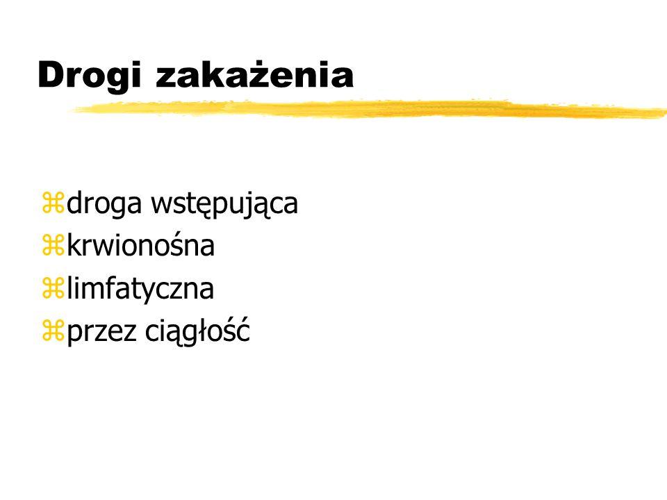 Etiologia: zdwoinki rzeżączki zgronkowce zpaciorkowce