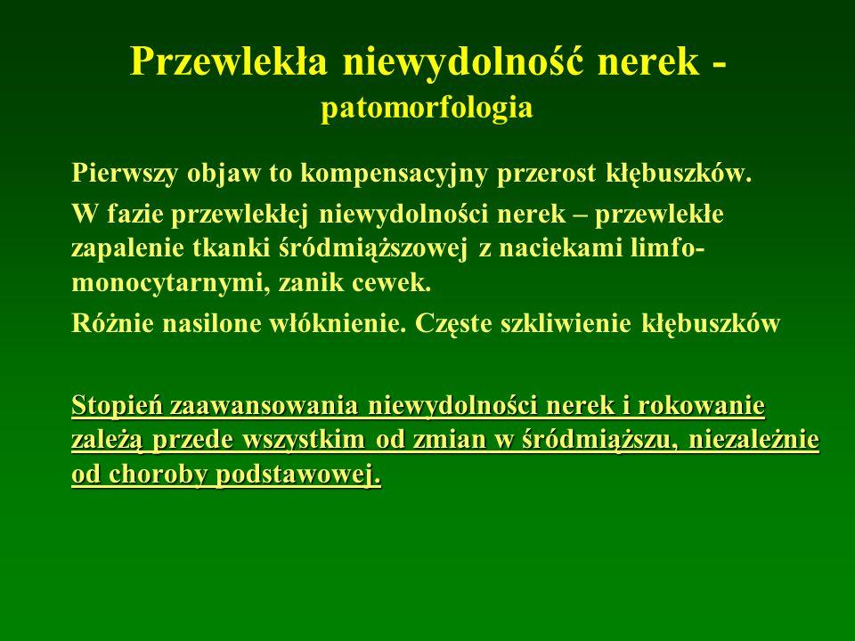 Przewlekła niewydolność nerek - patomorfologia Pierwszy objaw to kompensacyjny przerost kłębuszków.