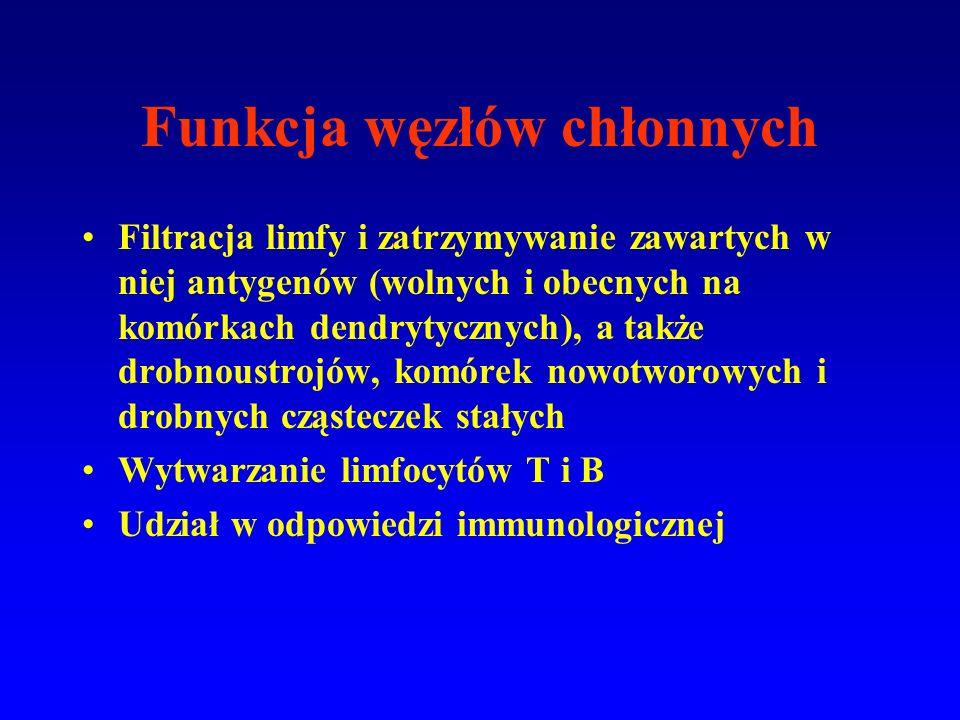 Funkcja węzłów chłonnych Filtracja limfy i zatrzymywanie zawartych w niej antygenów (wolnych i obecnych na komórkach dendrytycznych), a także drobnoustrojów, komórek nowotworowych i drobnych cząsteczek stałych Wytwarzanie limfocytów T i B Udział w odpowiedzi immunologicznej