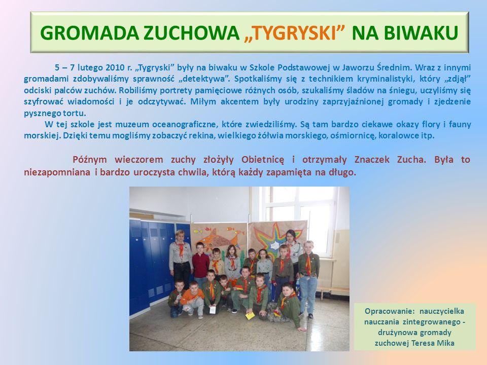 """GROMADA ZUCHOWA """"TYGRYSKI"""" NA BIWAKU 5 – 7 lutego 2010 r. """"Tygryski"""" były na biwaku w Szkole Podstawowej w Jaworzu Średnim. Wraz z innymi gromadami zd"""