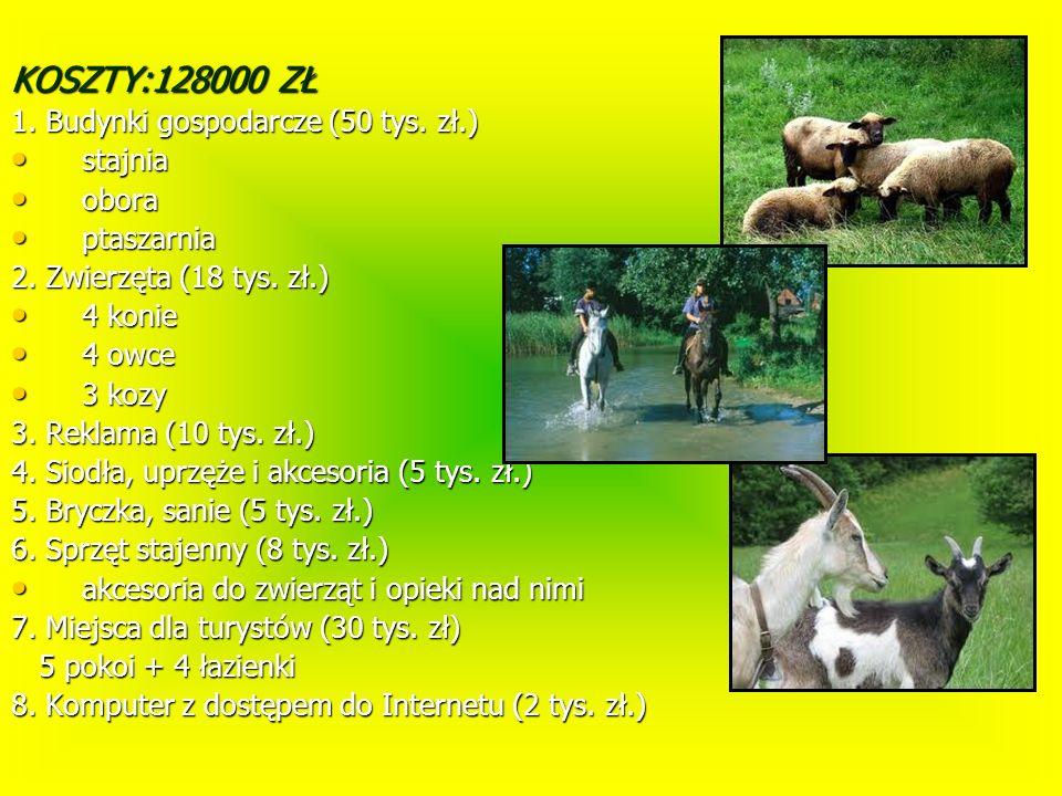 KOSZTY:128000 ZŁ 1. Budynki gospodarcze (50 tys. zł.) stajnia stajnia obora obora ptaszarnia ptaszarnia 2. Zwierzęta (18 tys. zł.) 4 konie 4 konie 4 o