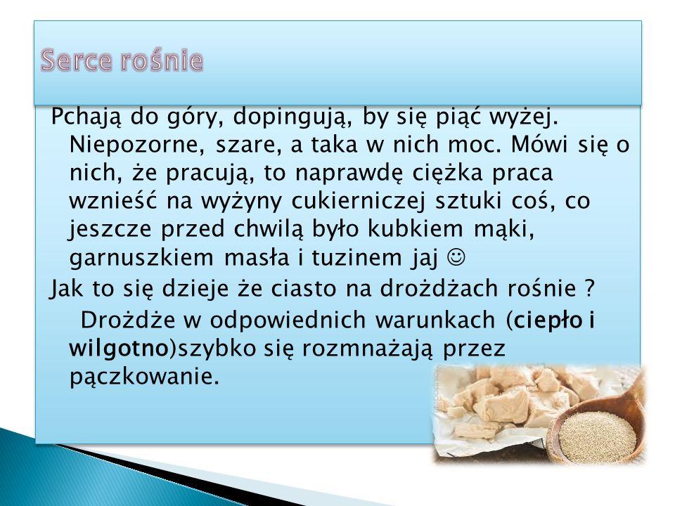 Oto niektóre z nich:  bułeczki mleczne,  drożdżowe placki ( np.