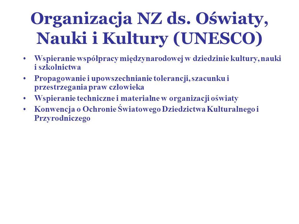 Organizacja NZ ds.