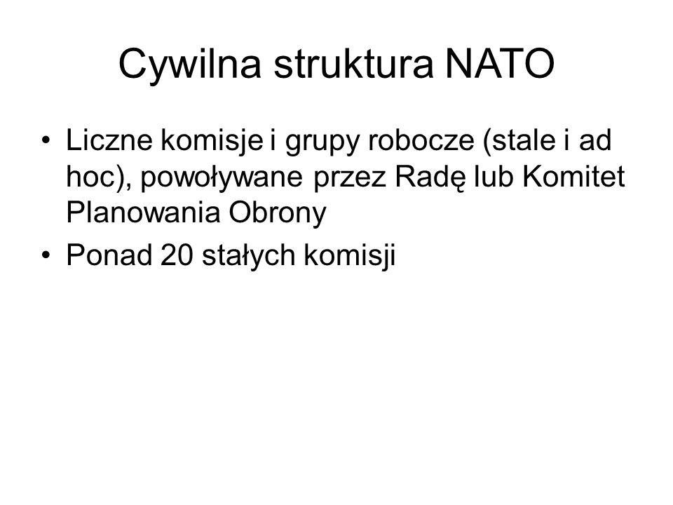 Cywilna struktura NATO Liczne komisje i grupy robocze (stale i ad hoc), powoływane przez Radę lub Komitet Planowania Obrony Ponad 20 stałych komisji
