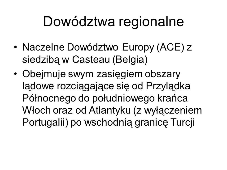Dowództwa regionalne Naczelne Dowództwo Europy (ACE) z siedzibą w Casteau (Belgia) Obejmuje swym zasięgiem obszary lądowe rozciągające się od Przylądka Północnego do południowego krańca Włoch oraz od Atlantyku (z wyłączeniem Portugalii) po wschodnią granicę Turcji