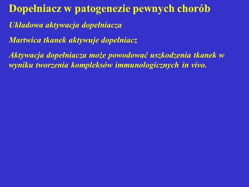 Dopełniacz w patogenezie pewnych chorób Układowa aktywacja dopełniacza Martwica tkanek aktywuje dopełniacz Aktywacja dopełniacza może powodować uszkod