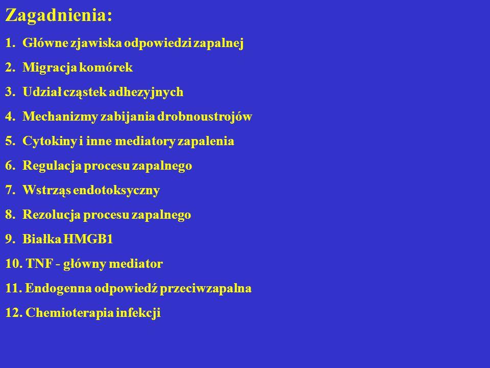 Endogenna odpowiedź przeciwzapalna Endogenna odpowiedź przeciwzapalna hamuje proces zapalny, ograniczając wystąpienie odpowiedzi potencjalnie szkodliwej dla organizmu.