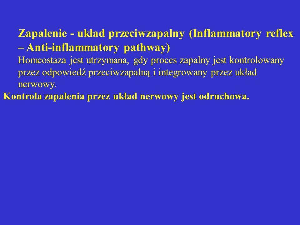 Zapalenie - układ przeciwzapalny (Inflammatory reflex – Anti-inflammatory pathway) Homeostaza jest utrzymana, gdy proces zapalny jest kontrolowany prz