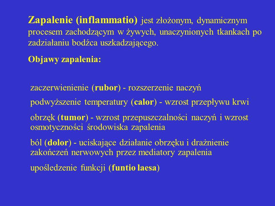 Zapalenie (inflammatio) jest złożonym, dynamicznym procesem zachodzącym w żywych, unaczynionych tkankach po zadziałaniu bodźca uszkadzającego. Objawy