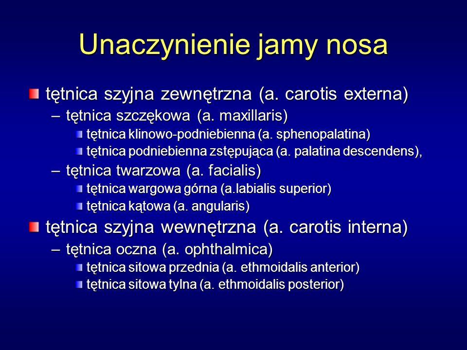 Unaczynienie jamy nosa tętnica szyjna zewnętrzna (a. carotis externa) –tętnica szczękowa (a. maxillaris) tętnica klinowo-podniebienna (a. sphenopalati