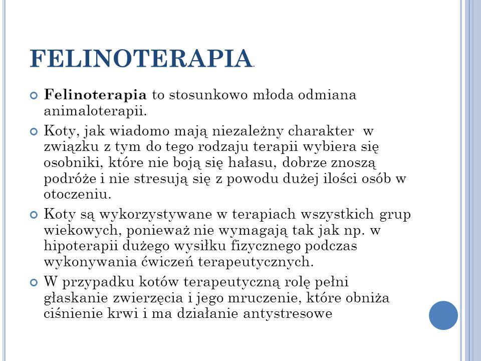 FELINOTERAPIA. Felinoterapia to stosunkowo młoda odmiana animaloterapii. Koty, jak wiadomo mają niezależny charakter w związku z tym do tego rodzaju t