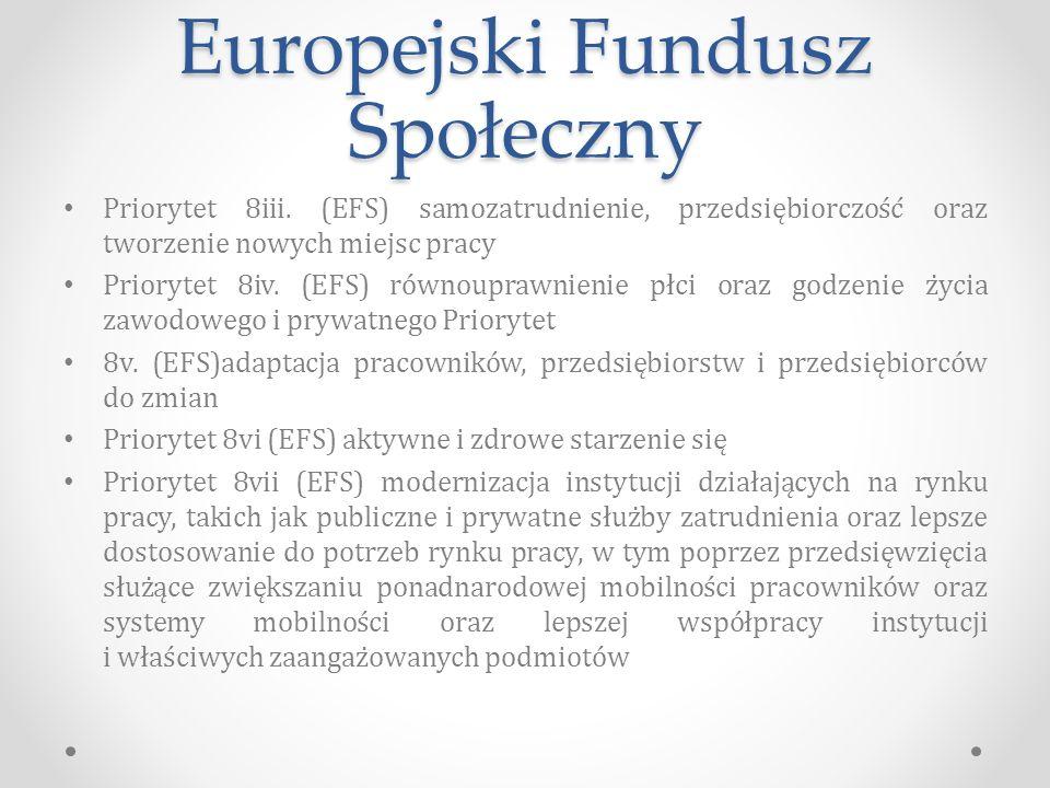 Europejski Fundusz Społeczny Priorytet 8iii.