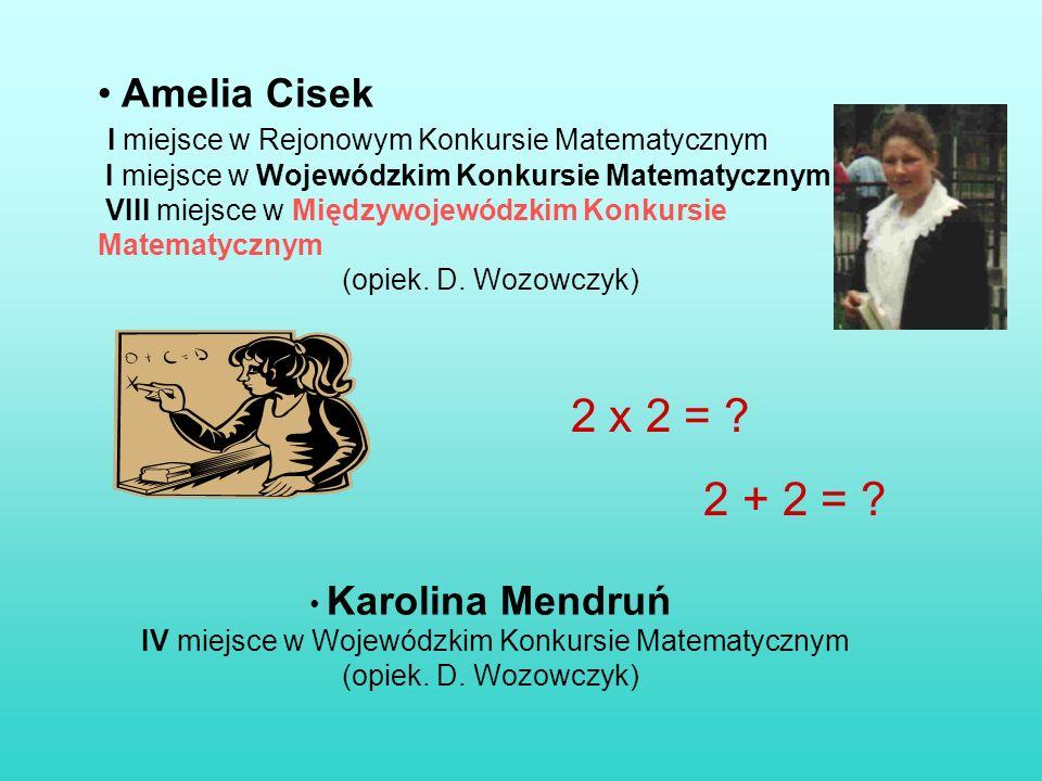 Amelia Cisek I miejsce w Rejonowym Konkursie Matematycznym I miejsce w Wojewódzkim Konkursie Matematycznym VIII miejsce w Międzywojewódzkim Konkursie Matematycznym (opiek.