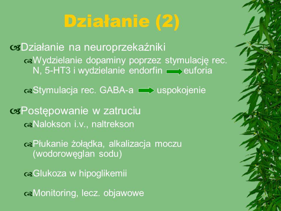 Działanie (2)  Działanie na neuroprzekaźniki  Wydzielanie dopaminy poprzez stymulację rec. N, 5-HT3 i wydzielanie endorfin euforia  Stymulacja rec.