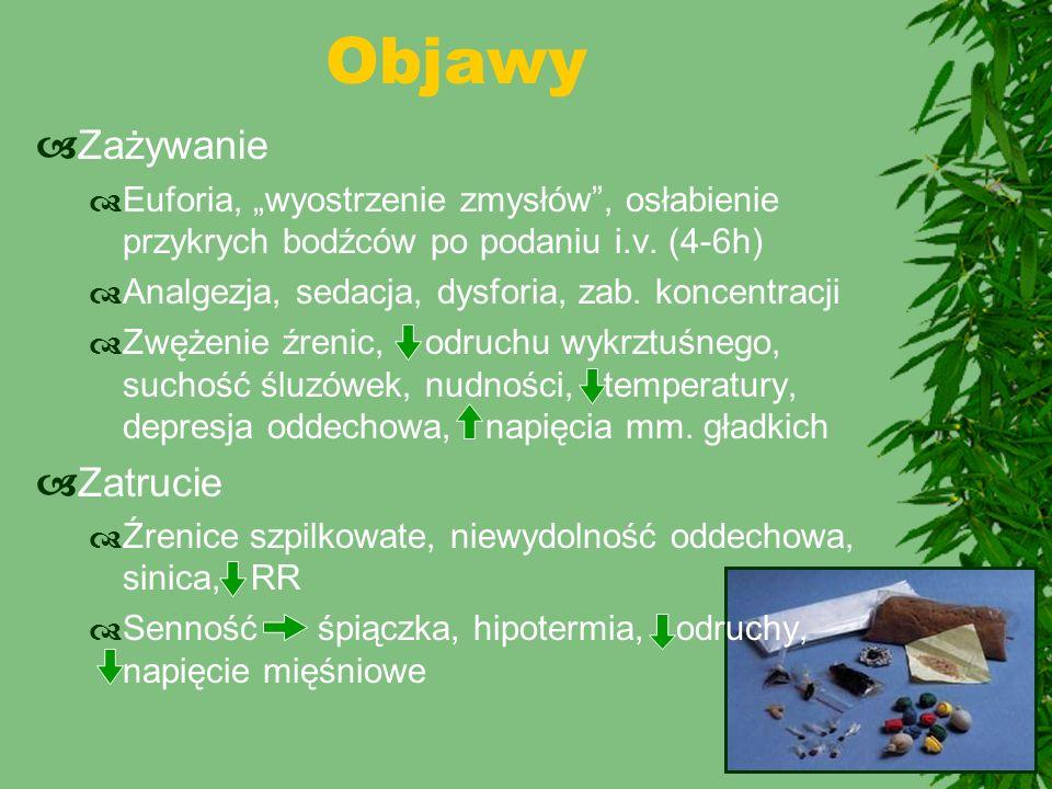"""Objawy  Zażywanie  Euforia, """"wyostrzenie zmysłów"""", osłabienie przykrych bodźców po podaniu i.v. (4-6h)  Analgezja, sedacja, dysforia, zab. koncentr"""