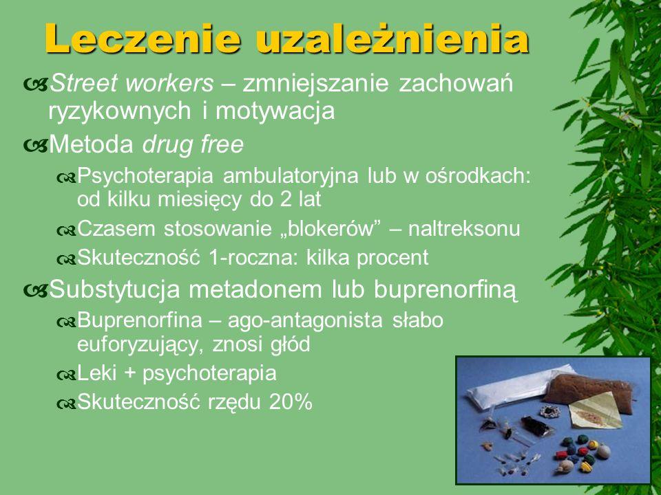 Leczenie uzależnienia  Street workers – zmniejszanie zachowań ryzykownych i motywacja  Metoda drug free  Psychoterapia ambulatoryjna lub w ośrodkac