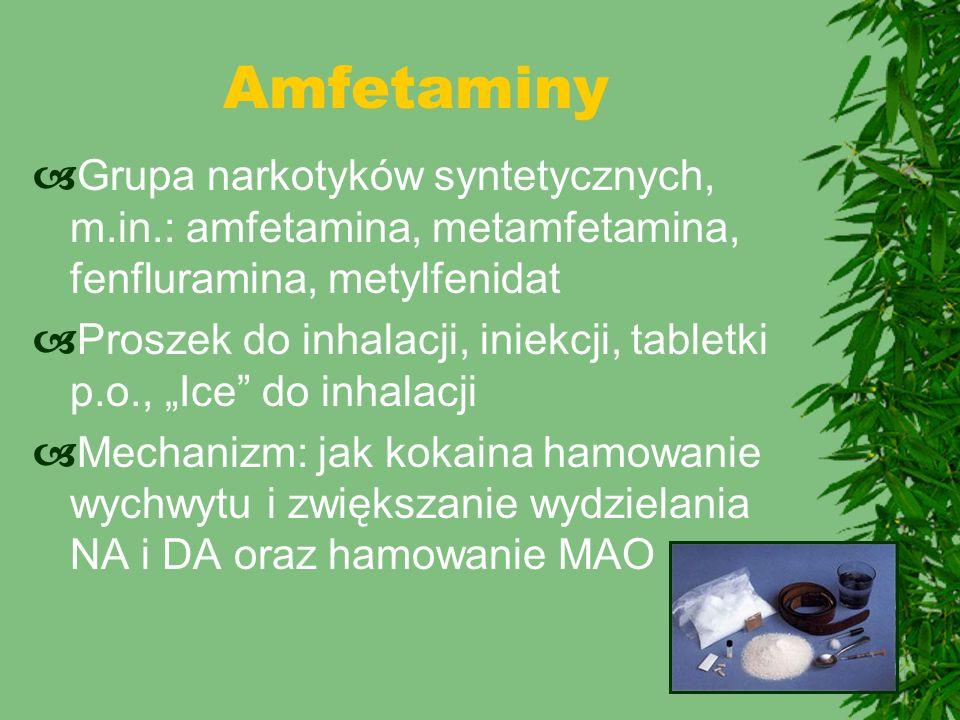 """ Grupa narkotyków syntetycznych, m.in.: amfetamina, metamfetamina, fenfluramina, metylfenidat  Proszek do inhalacji, iniekcji, tabletki p.o., """"Ice"""""""