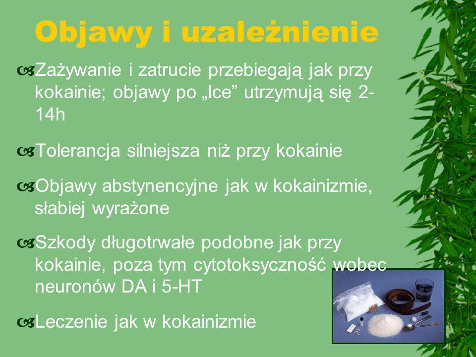 """Objawy i uzależnienie  Zażywanie i zatrucie przebiegają jak przy kokainie; objawy po """"Ice"""" utrzymują się 2- 14h  Tolerancja silniejsza niż przy koka"""