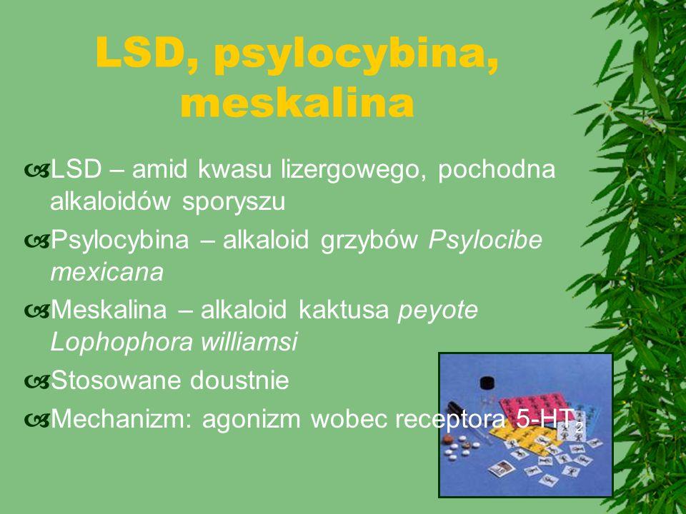 LSD, psylocybina, meskalina  LSD – amid kwasu lizergowego, pochodna alkaloidów sporyszu  Psylocybina – alkaloid grzybów Psylocibe mexicana  Meskali