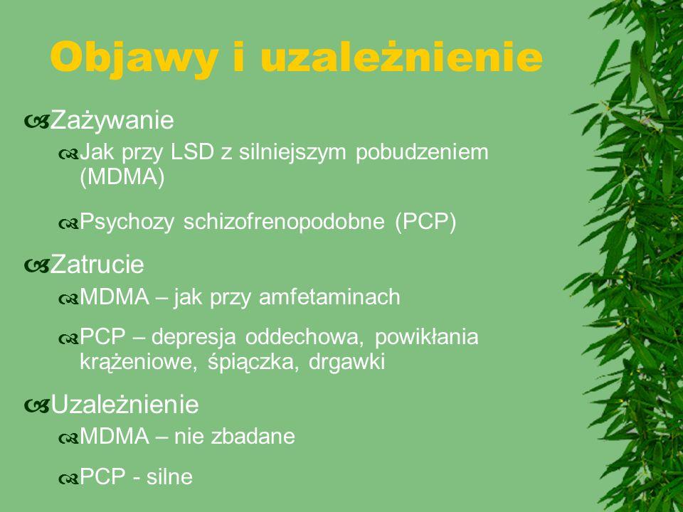 Objawy i uzależnienie  Zażywanie  Jak przy LSD z silniejszym pobudzeniem (MDMA)  Psychozy schizofrenopodobne (PCP)  Zatrucie  MDMA – jak przy amf