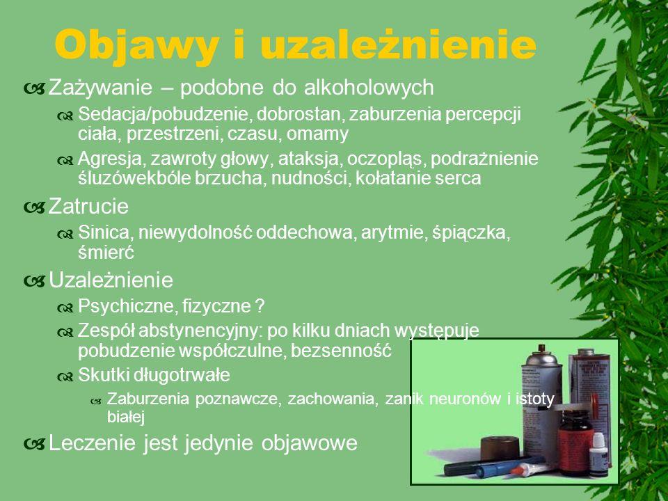 Objawy i uzależnienie  Zażywanie – podobne do alkoholowych  Sedacja/pobudzenie, dobrostan, zaburzenia percepcji ciała, przestrzeni, czasu, omamy  A