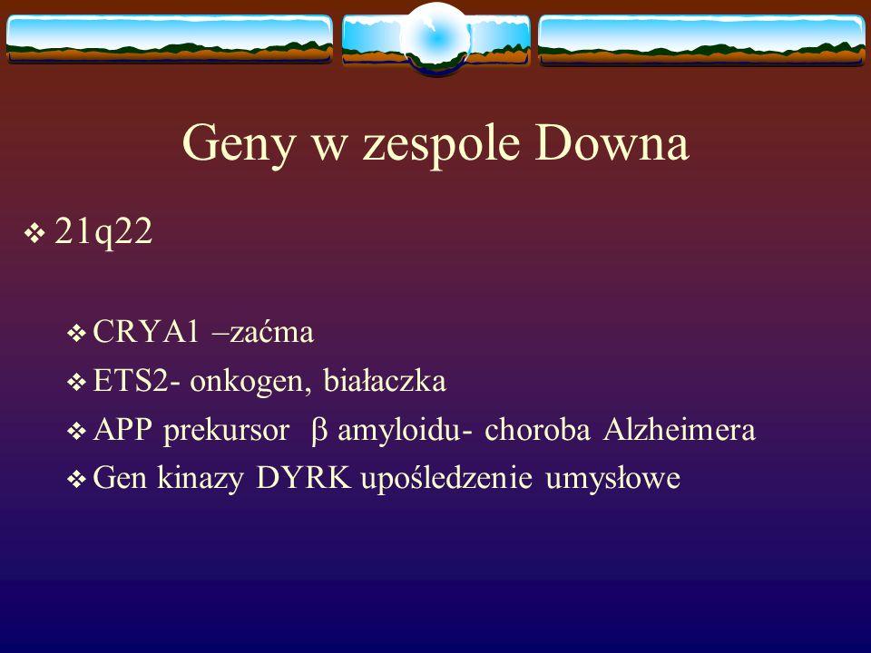 Geny w zespole Downa  21q22  CRYA1 –zaćma  ETS2- onkogen, białaczka  APP prekursor  amyloidu- choroba Alzheimera  Gen kinazy DYRK upośledzenie u