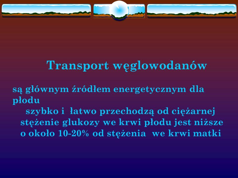 Transport węglowodanów są głównym źródłem energetycznym dla płodu szybko i łatwo przechodzą od ciężarnej stężenie glukozy we krwi płodu jest niższe o