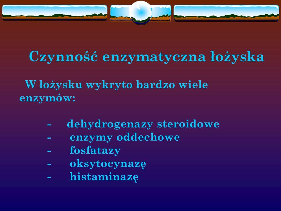 Czynność enzymatyczna łożyska W łożysku wykryto bardzo wiele enzymów: - dehydrogenazy steroidowe - enzymy oddechowe - fosfatazy - oksytocynazę - hista