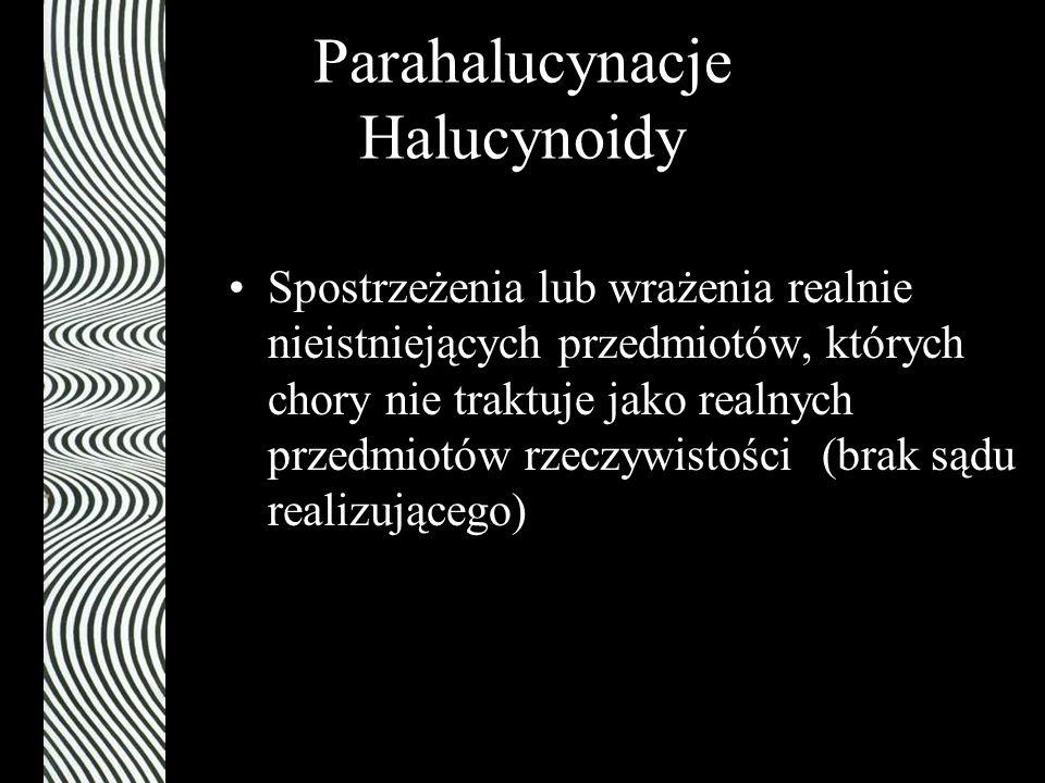Parahalucynacje Halucynoidy Spostrzeżenia lub wrażenia realnie nieistniejących przedmiotów, których chory nie traktuje jako realnych przedmiotów rzecz