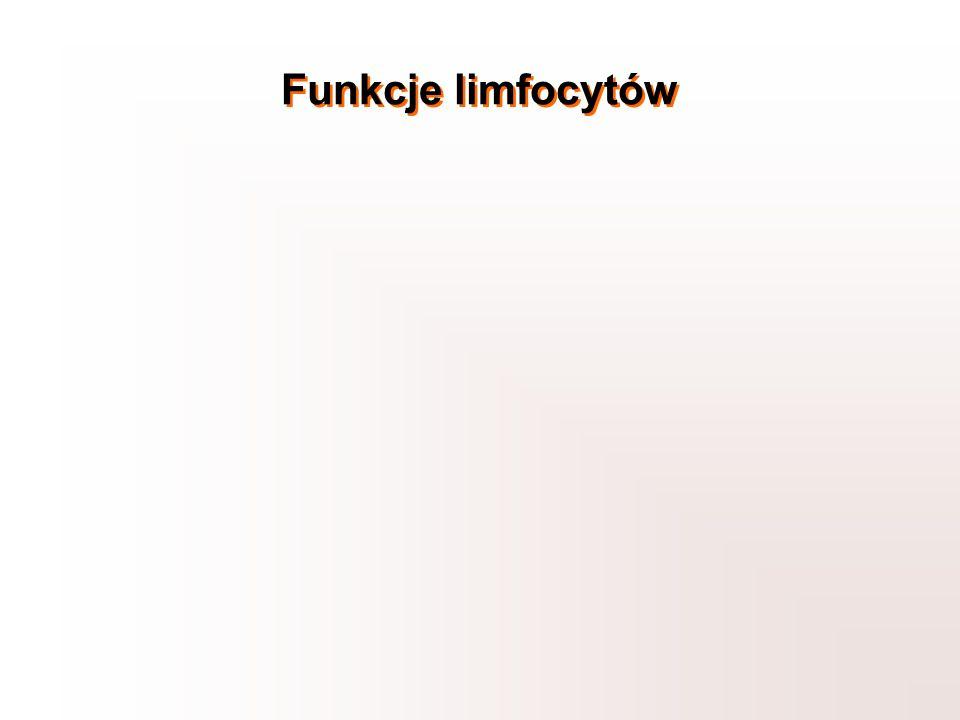 Funkcje limfocytów